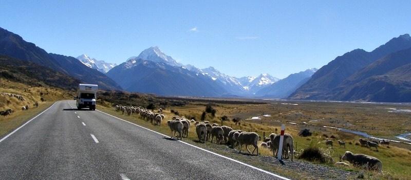 NZキャンパーホリデーホームページ