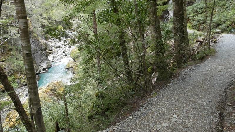 ルートバーン沿いの森の中の道のり