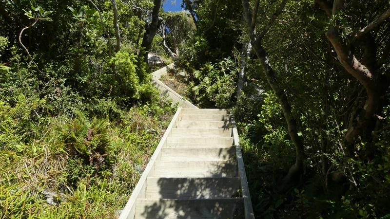 セアリーターンへの階段